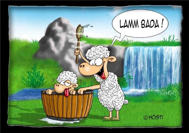 13 - VS Lamm Bada