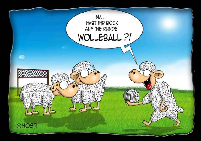38 - VS Wolleball