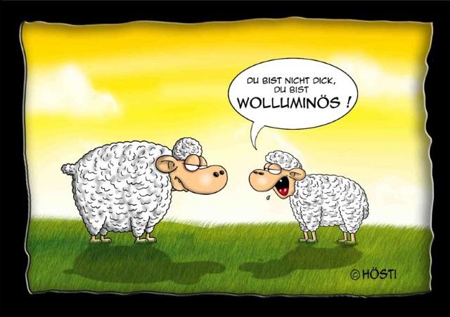 45 - VS Wolluminös