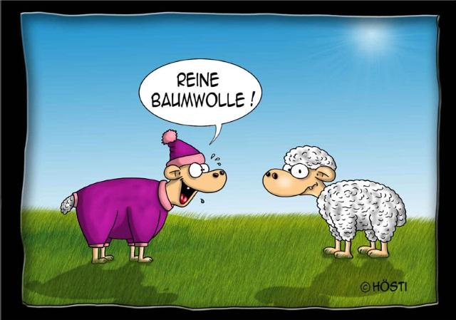 7 - VS Baumwolle